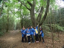野外研究会が Leith Hillに外出。緑美しい丘の散策風景を写真でどうぞ。