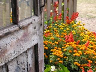 :「イギリスの文化にふれて」一番何が興味深いかと言えば、それは「庭」である。