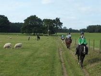 のどかな野山と自然の美しさの中で、イギリスならではの乗馬。