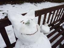 キャンパスに降り積もった真っ白な雪!朝から大はしゃぎの生徒達。