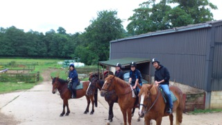 乗馬の寄り道 〔番外編〕夏と馬の散歩