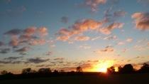 夕陽に色づく広い空:2学期最後の乗馬デー