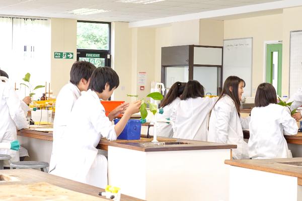 現地校と同じ理科教育